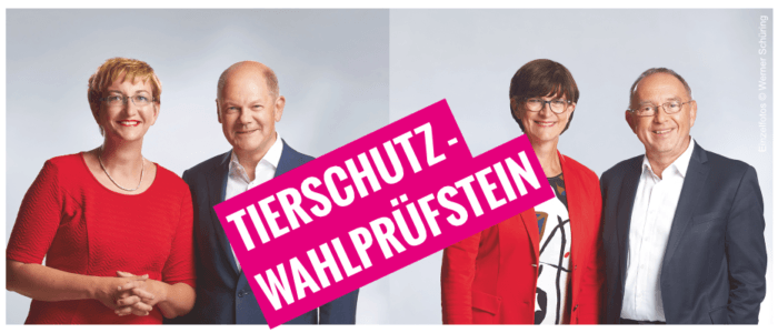 Tierschutz-Wahlprüfstein: Klara Geywitz, Olaf Scholz, Saskia Esken, Norbert Walter-Borjans