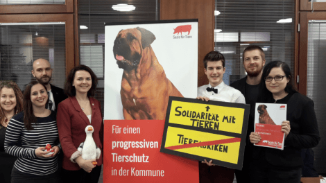 Sozis für Tiere with a RollUp - For a progressive animal protection in the municipality